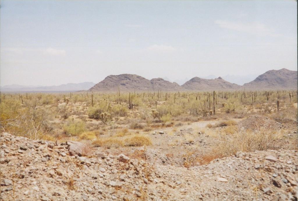 Arizona desert - research