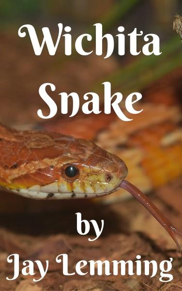 Wichita Snake: #1 of the Maddox Men Series